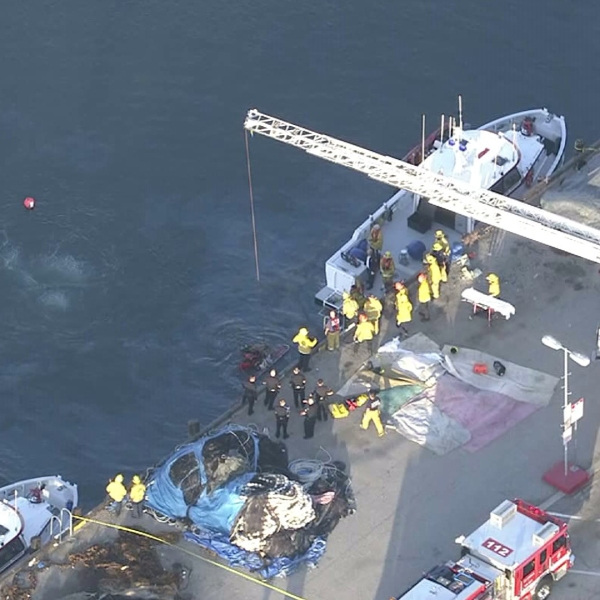 Rescuers responded to a report of a vehicle in the harbor in San Pedro on April 9, 2015. (Credit: KTLA)