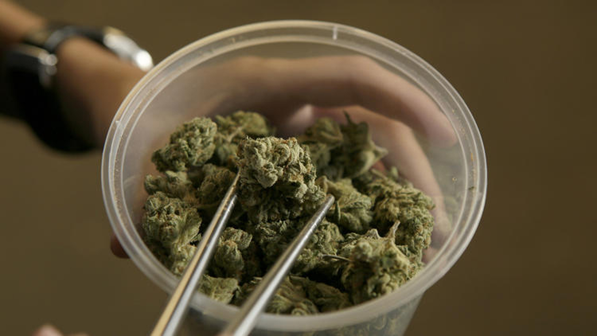 Marijuana is seen in this file photo. (Credit: Irfan Khan / Los Angeles Times