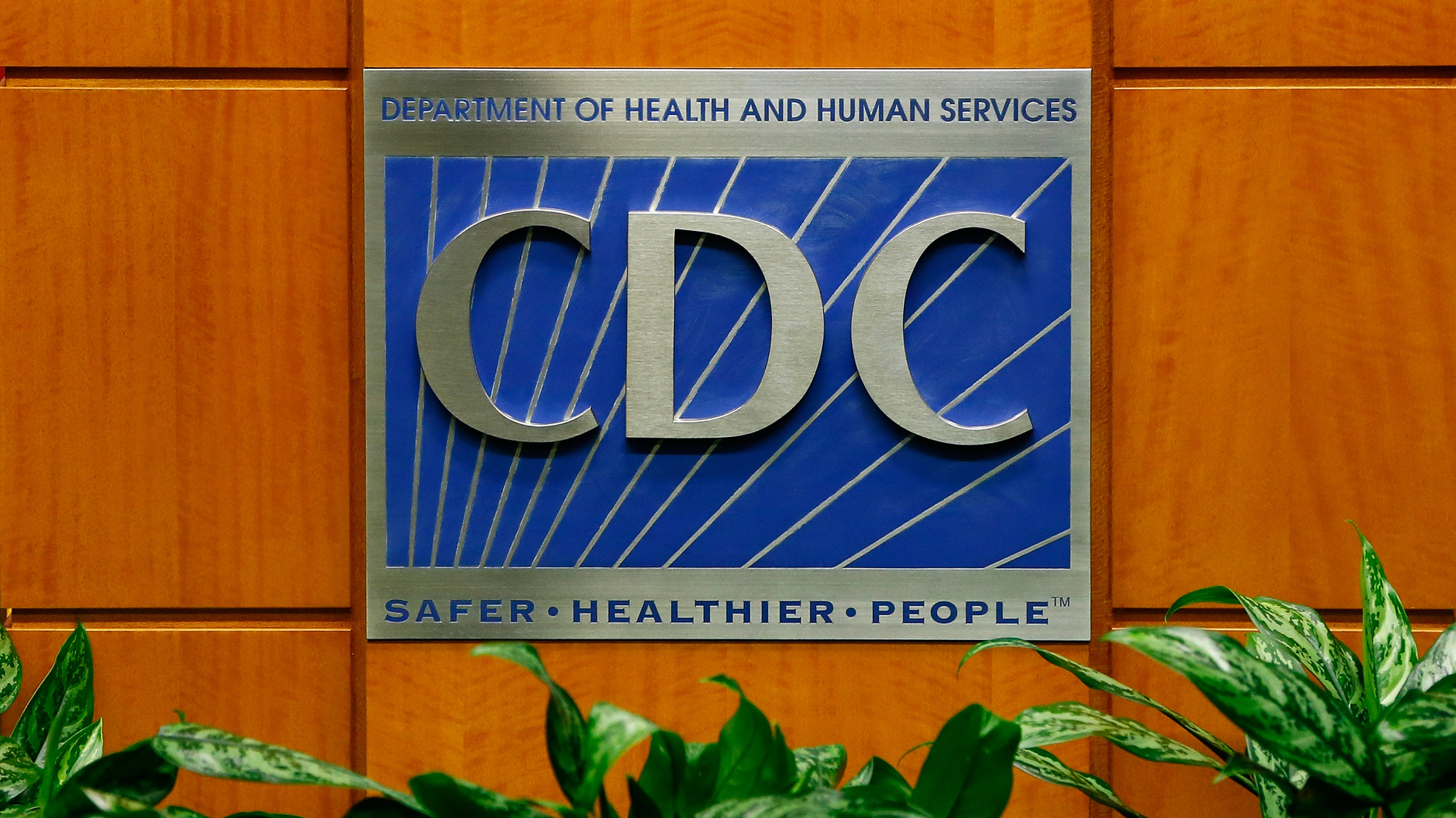 A podium with the logo for the Centers for Disease Control and Prevention at the Tom Harkin Global Communications Center on Oct. 5, 2014, in Atlanta. (Credit: Kevin C. Cox/Getty Images)