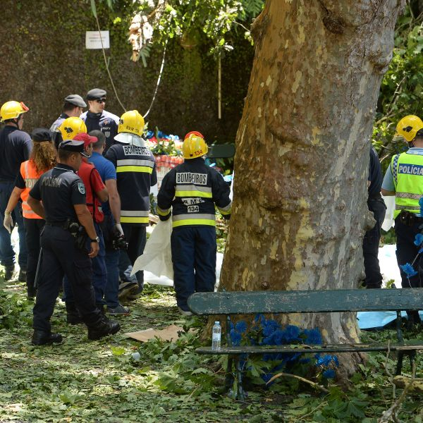 Firefighters work at the area affected by a tree fall that killed several people in Funchal on August 15, 2017. (Credit: HELDER SANTOS/AFP/Getty Images)