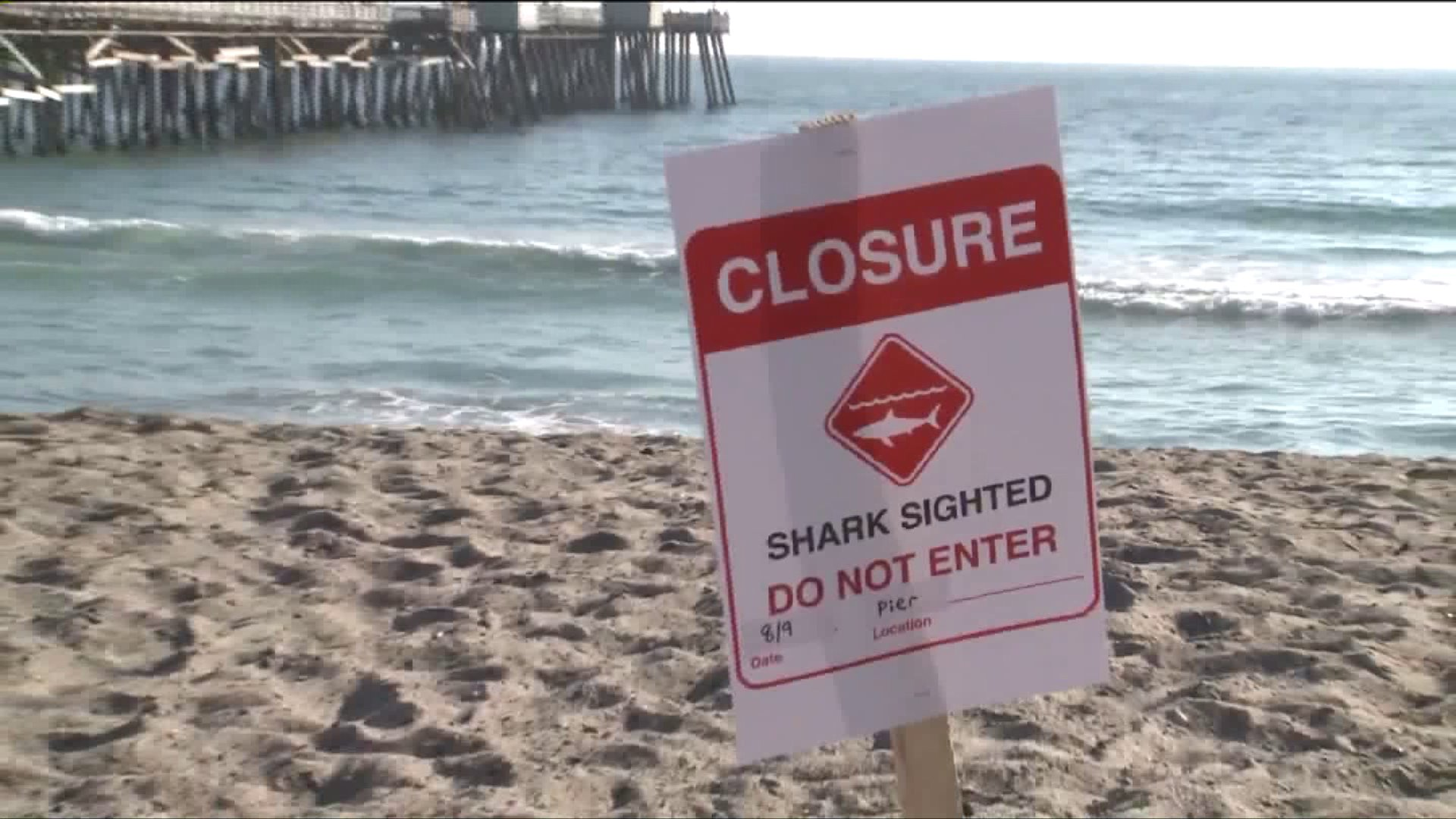 A sign is seen warning people not to enter the San Clemente beach where a shark was spotted on Aug. 9, 2017. (Credit: KTLA)