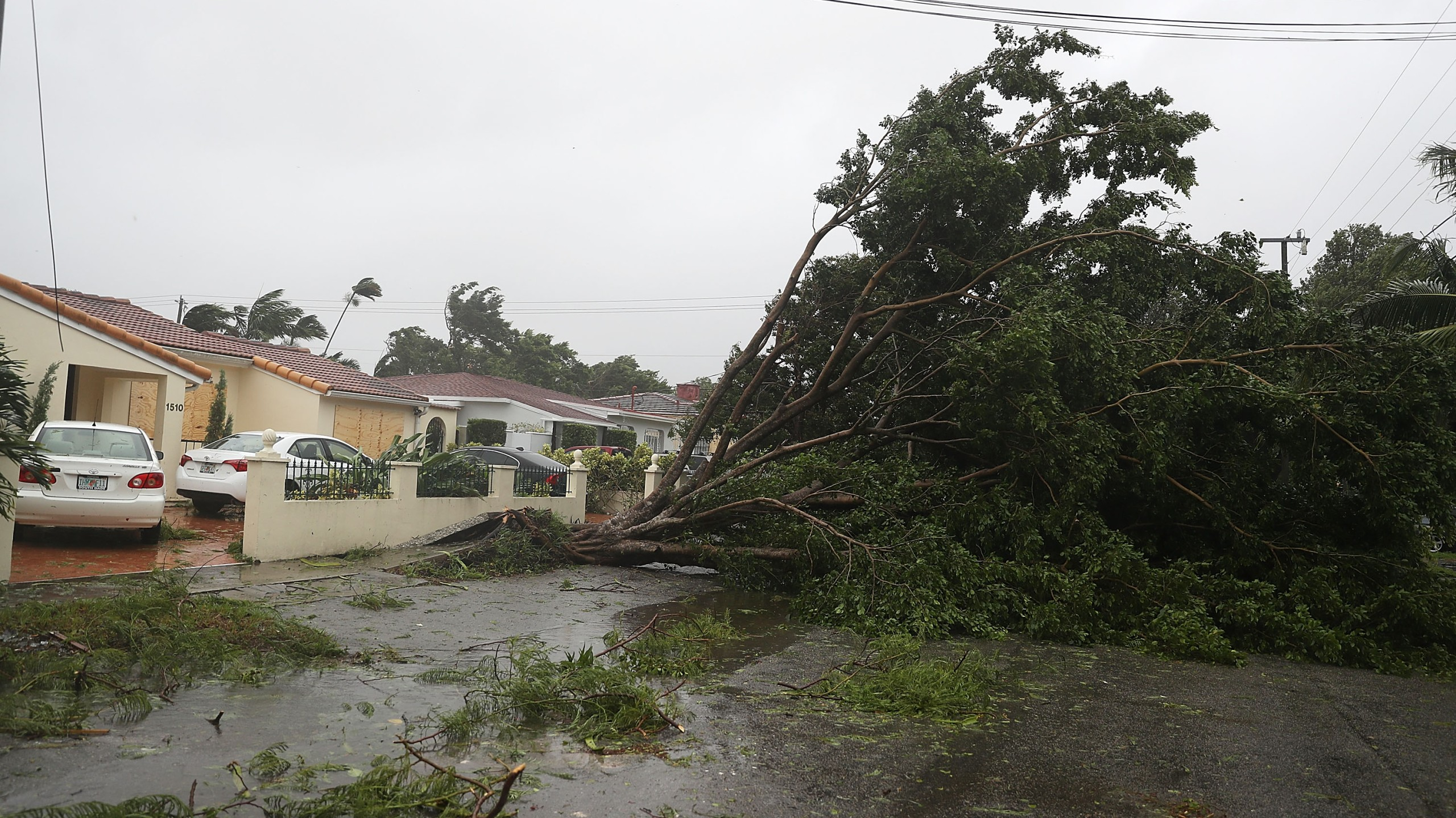 Trees and branches are seen knocked down by high winds of Hurricane Irma on Sept. 10, 2017, in Miami, Florida. (Credit: Joe Raedle/Getty Images)