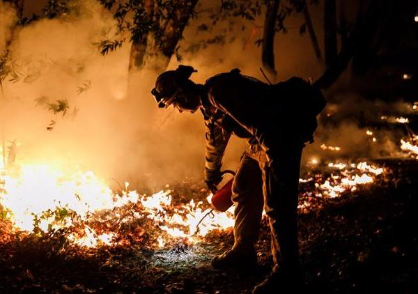 Firefighter Brandon Tolp works to prevent flames from crossing Highway 29, north of Calistoga, Calif. as wildfires raged in Northern California in October, 2017. (Credit: Marcus Yam / Los Angeles Times)