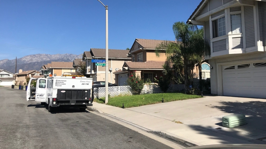 Fontana police released a photo of the residential area where officers killed a mountain lion on Oct. 17, 2017.
