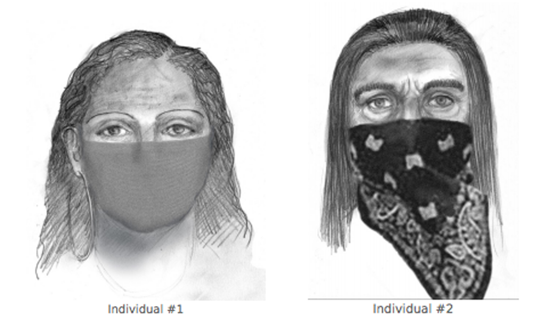 The FBI released these suspect sketches of a man and a woman being sought in connection with the kidnapping of Redding mother Sherri Papini.