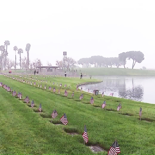 Flags are placed for every fallen soldier at Riverside National Cemetery on Nov. 10, 2017. (Credit: KTLA)
