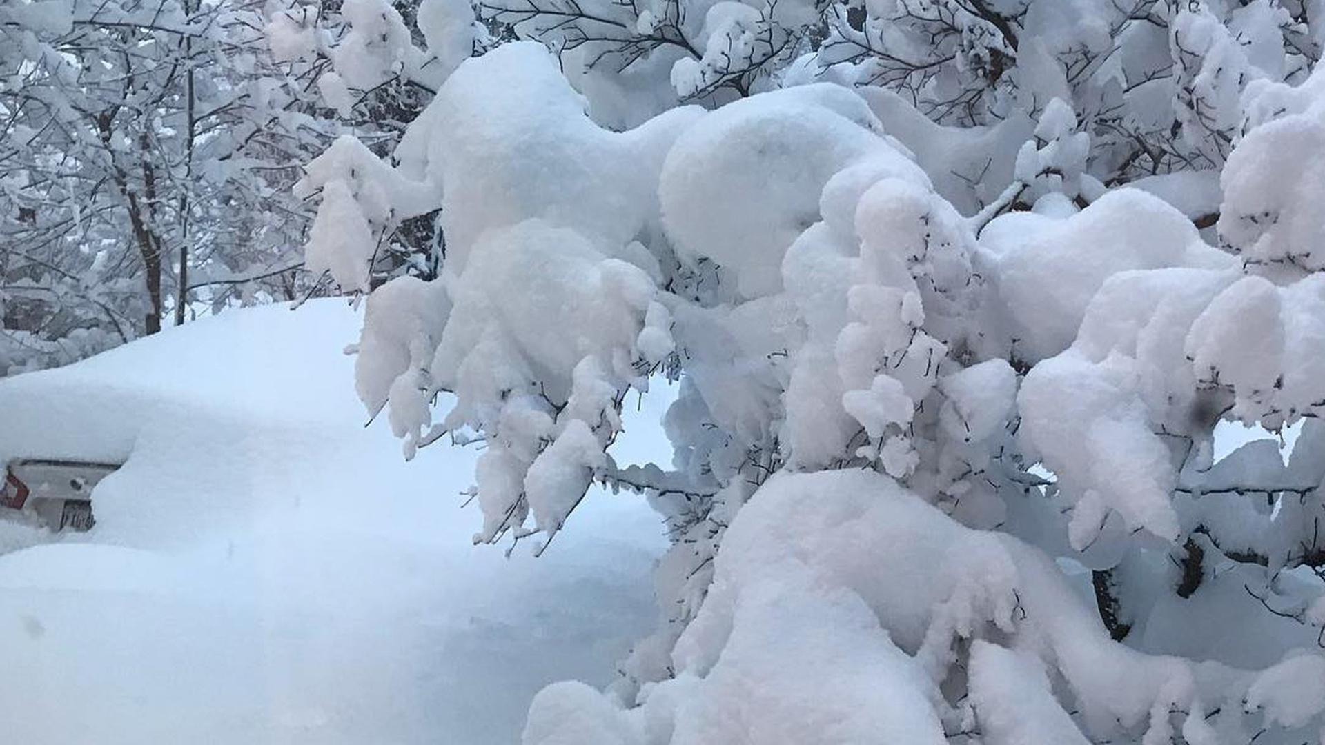 Erie, Pennsylvania, had a total of 34 inches of snow on Christmas Day, blanketing the city and shattering the city's previous records for snowfall in a single day. (Credit: Kara Murphy)