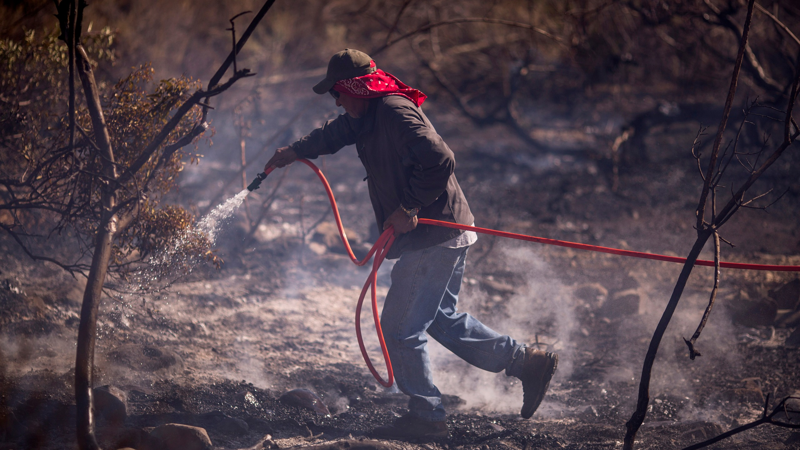 A farmworker fights the Thomas Fire on December 7, 2017 near Fillmore, California. (Credit: David McNew/Getty Images)