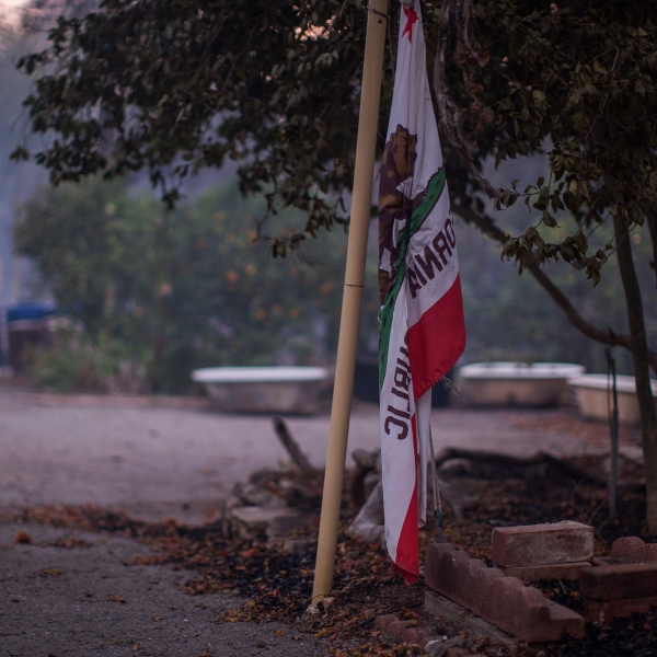 A California state flag is seen at a farm that was heavily damaged by the Thomas Fire on Dec. 10, 2017 near Carpinteria, California. (Credit: David McNew/Getty Images)