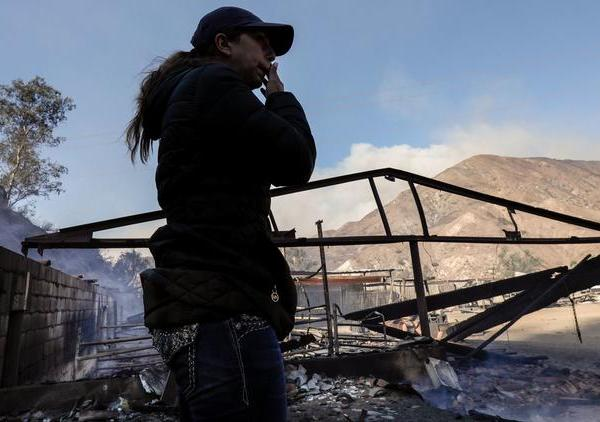 This undated photo shows a member of the Padilla family surveying her family's ranch in Sylmar, where 29 horses perished in the Creek Fire. (Credit: Irfan Khan / Los Angeles Times)