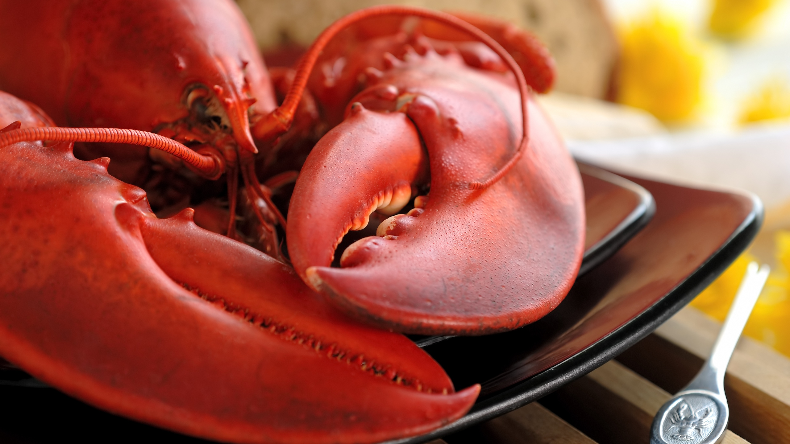 A boiled lobster is seen in this file photo. (Credit: iStock/Getty Images Plus)