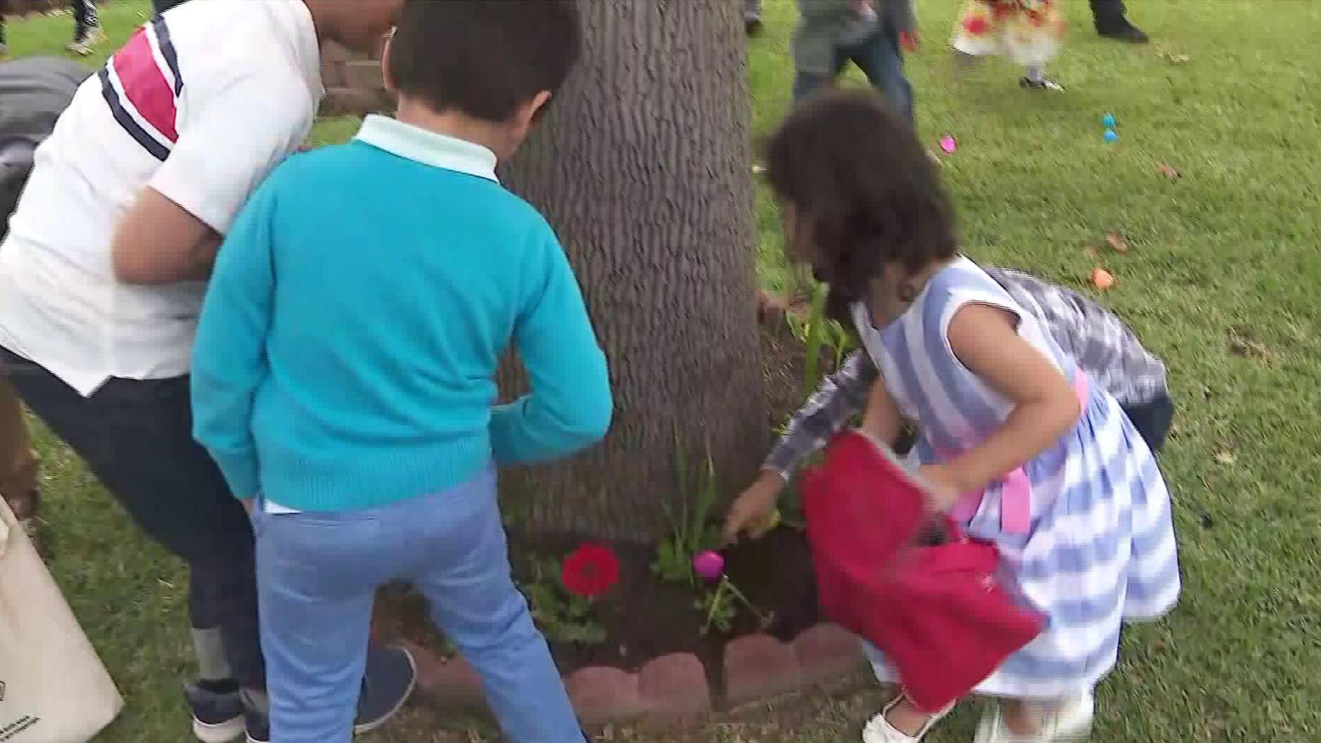 Children participate in an Easter egg hunt in Alhambra on April 1, 2018. (Credit: KTLA)