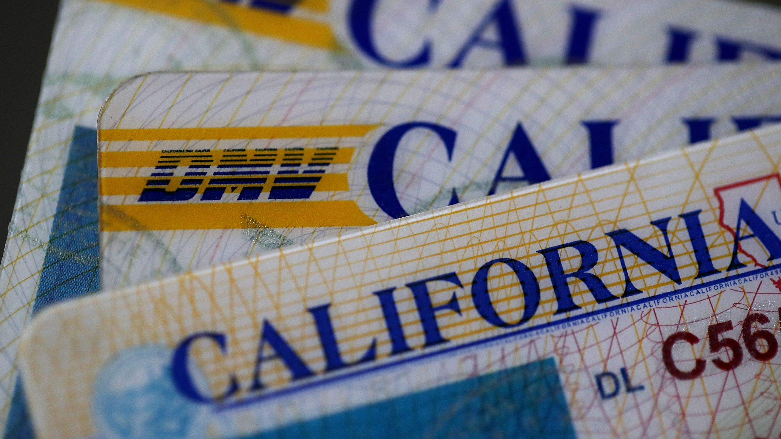 In this photo illustration, the California Department of Motor Vehicles logo appears on a driver's license on May 9, 2017 in San Anselmo. (Credit: Justin Sullivan / Getty Images)