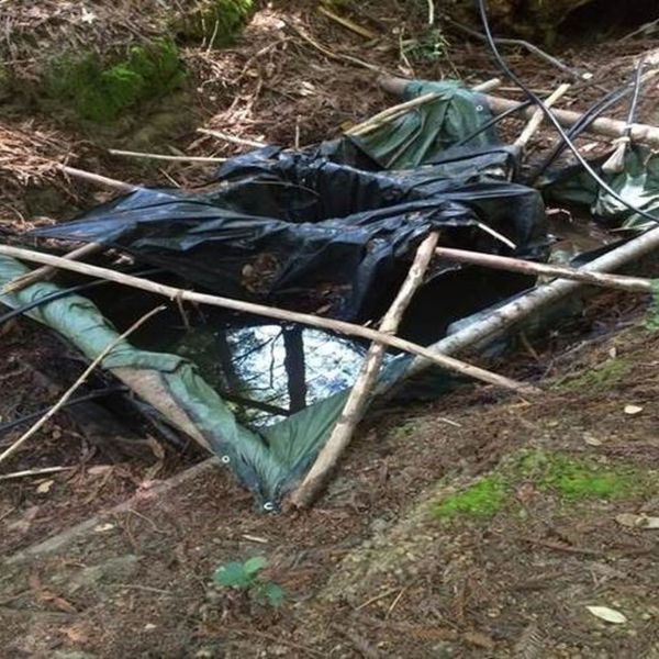 A contaminated pond is left behind in an illegal marijuana grow area in Northern California. (Credit: Humboldt County Sheriff's Department)