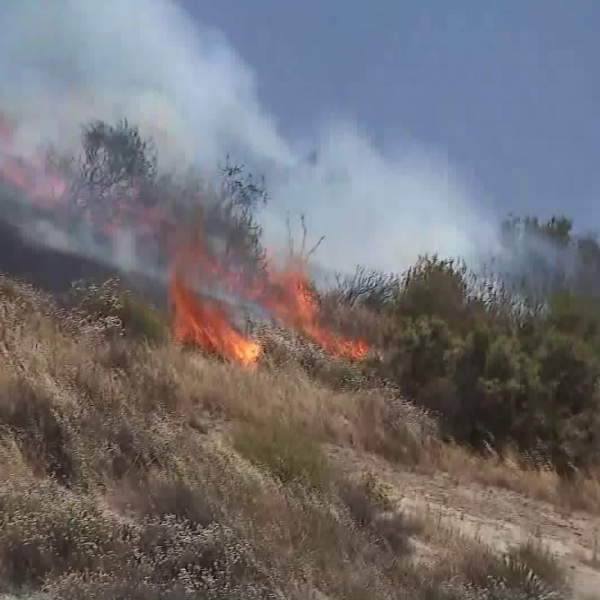 A brush fire burns in the Newhall area on June 19, 2018. (Credit: KTLA)