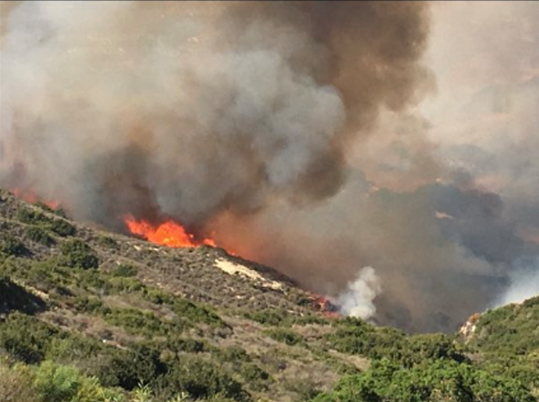 The so-called Aliso Fire had burned 200 acres and forced thousands of residents to evacuate on June 2, 2018, in Laguna Beach, according to the Orange County Fire Authority. (Credit: Laguna Beach Police Department Sgt. Jim Cota)