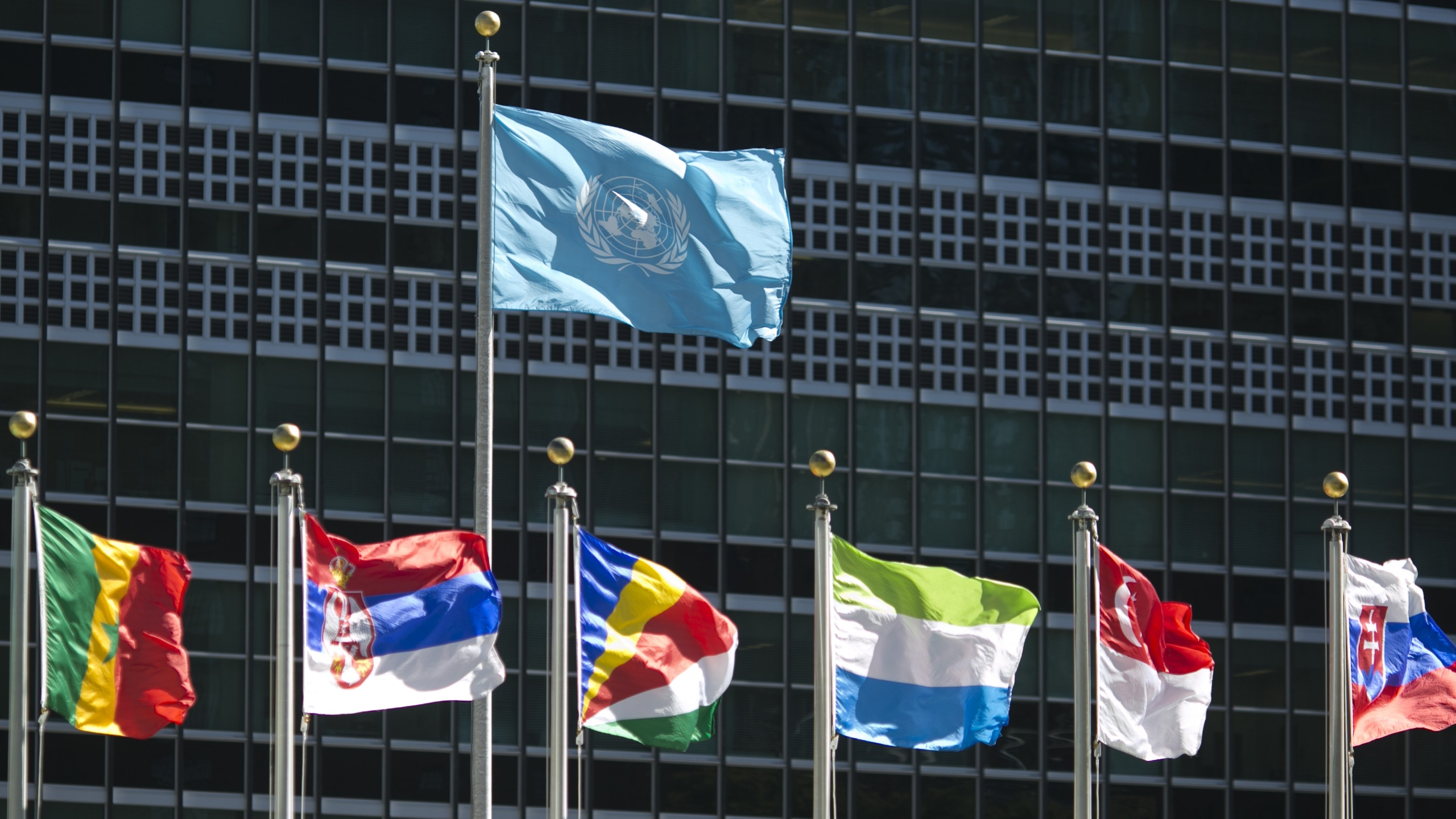 International flags fly in front of the United Nations headquarters on September 24, 2015, before the start of the 70th General Assembly meeting. (Credit: Dominick Reuter/AFP/Getty Images)