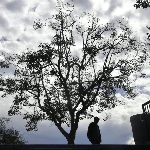 Cloudy skies are seen over Los Angeles as a man walks past trees outside the Los Angeles Coliseum on Nov. 7, 2017. (Credit: Frederic J. Brown/AFP/Getty Images)
