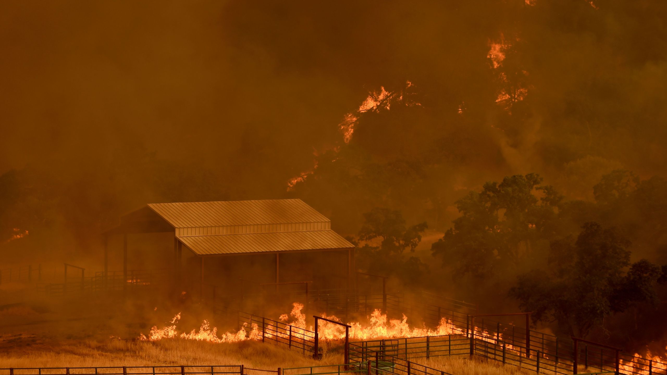 Flames from a wildfire in Yolo County move through a property in Guinda, California, on July 1, 2018. (Credit: JOSH EDELSON/AFP/Getty Images)