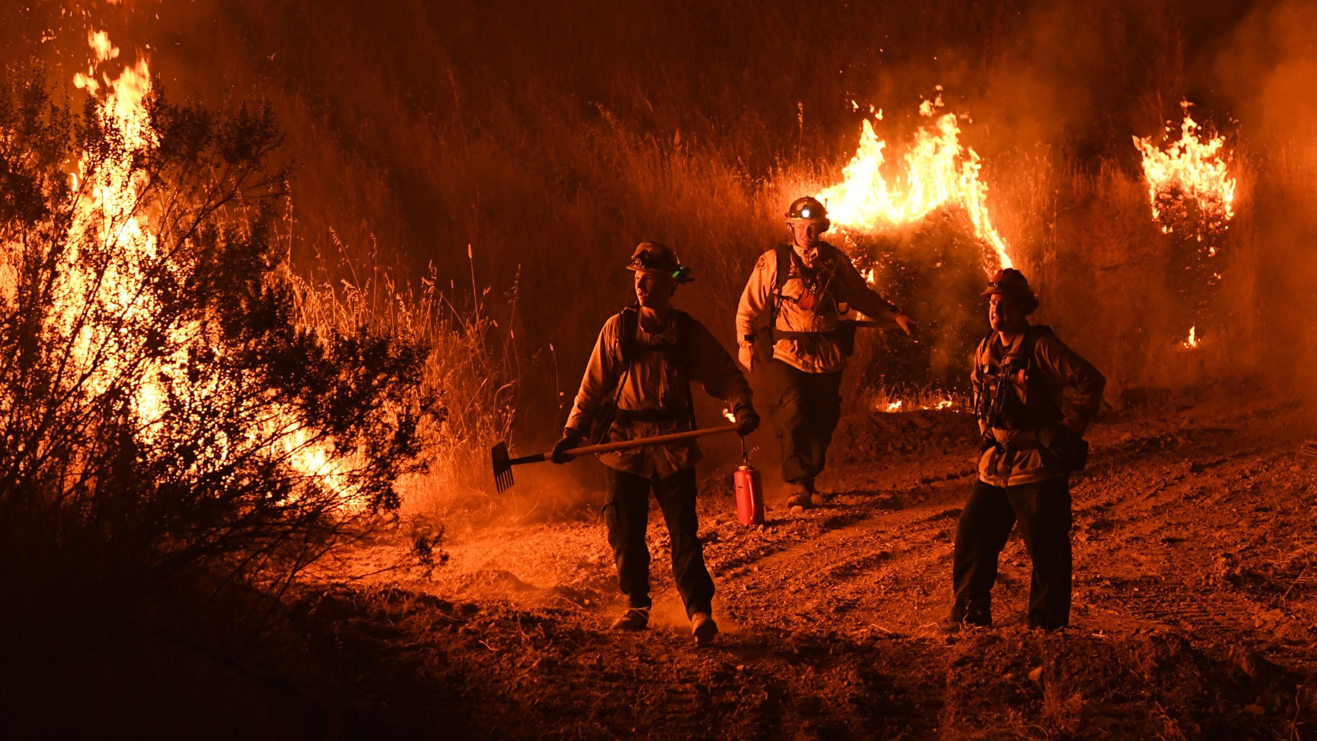 Firefighters conduct a controlled burn to defend houses against flames from the Ranch Fire, part of the Mendocino Complex Fire, as it continues to spreads toward the town of Upper Lake on Aug. 2, 2018. (Credit: Mark Ralston / AFP / Getty Images)