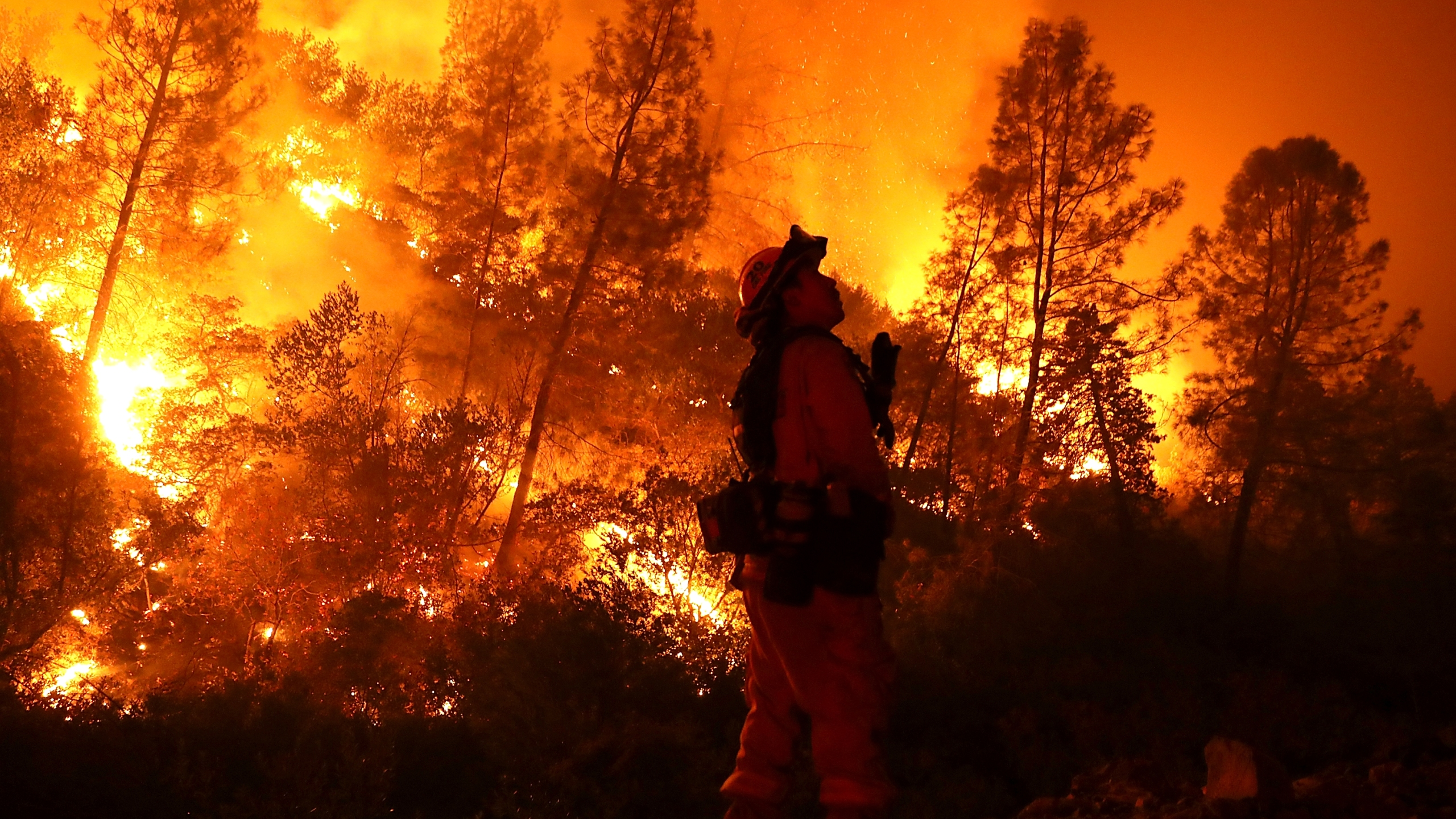 A firefighter monitors a back fire while battling the Medocino Complex Fire on August 7, 2018 near Lodoga. (Credit: Justin Sullivan/Getty Images)