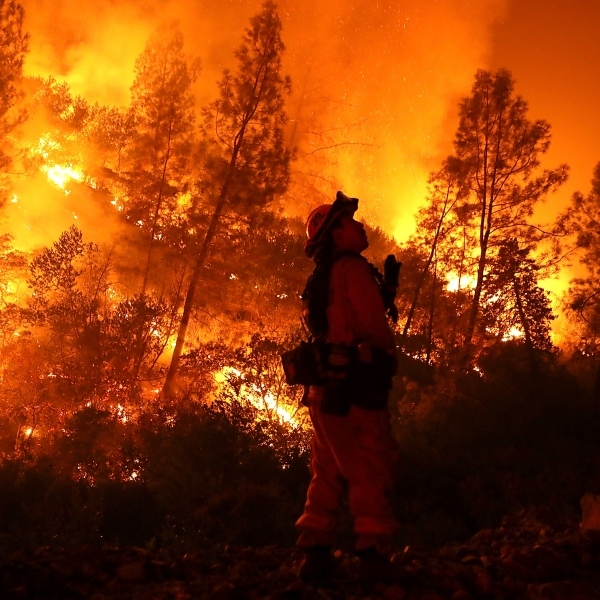 A firefighter monitors a back fire while battling the Medocino Complex Fire on Aug. 7, 2018, near Lodoga. (Credit: Justin Sullivan / Getty Images)