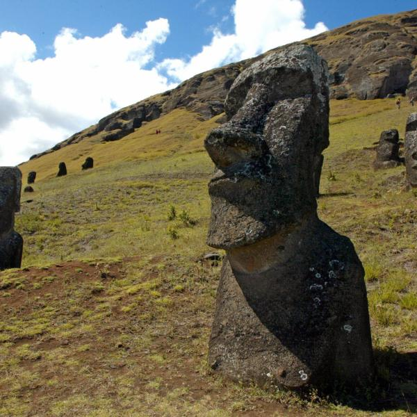 Picture of some of the 390 abandoned huge statues in the hillside of the Rano Raraku volcano in Easter Island, 3700 km off the coast of Chile, 12 February 2005. (Credit: MARTIN BERNETTI/AFP/Getty Images)