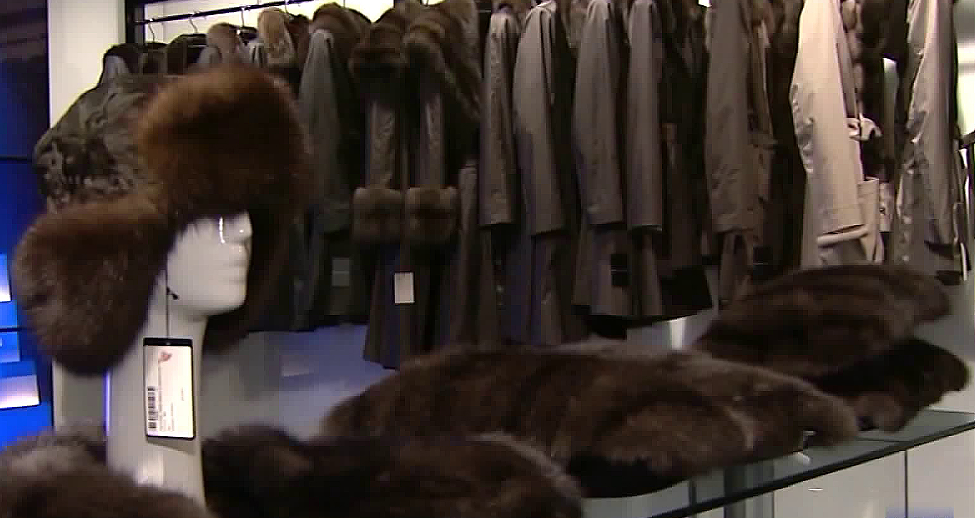 The Los Angeles City Council is expected to vote Tuesday on a plan to forbid the sale of fur products. (Credit: KTLA)