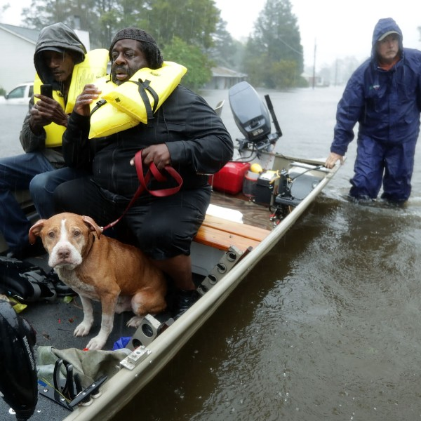 Volunteers from all over North Carolina help rescue residents and their pets from their flooded homes during Hurricane Florence on Sept. 14, 2018 in New Bern. (Credit: Chip Somodevilla/Getty Images)