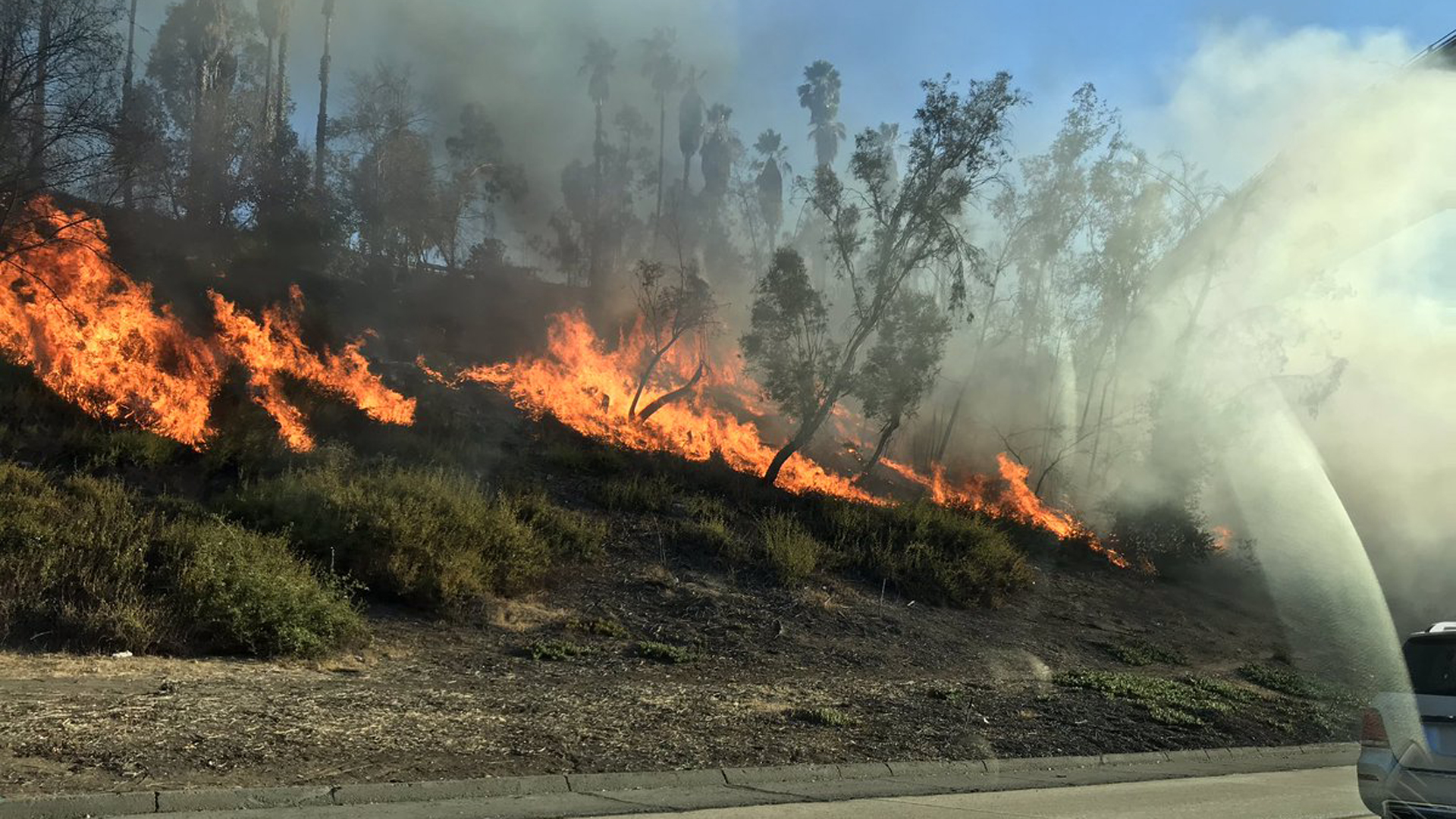 Firefighters work to extinguish a 2-acre brush fire along the 210 Freeway in Pasadena on Oct. 20, 2018. (Credit: Ricky Gordini/@TweetRickyG)
