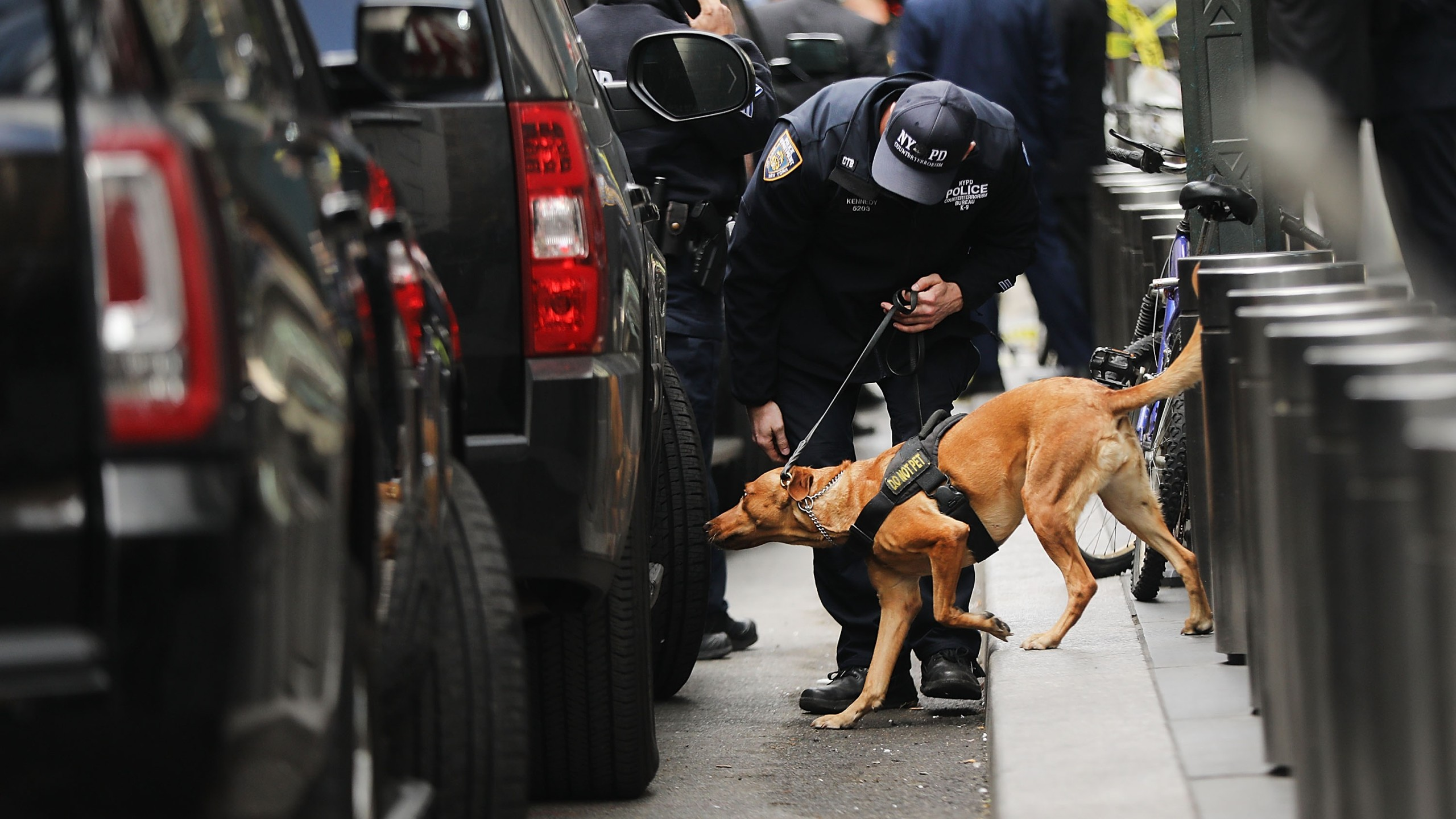 A police bomb-sniffing dog is deployed outside of the Time Warner Center after an explosive device was found Oct. 24, 2018, in New York City. CNN's office at the center was evacuated. (Credit: Spencer Platt/Getty Images)