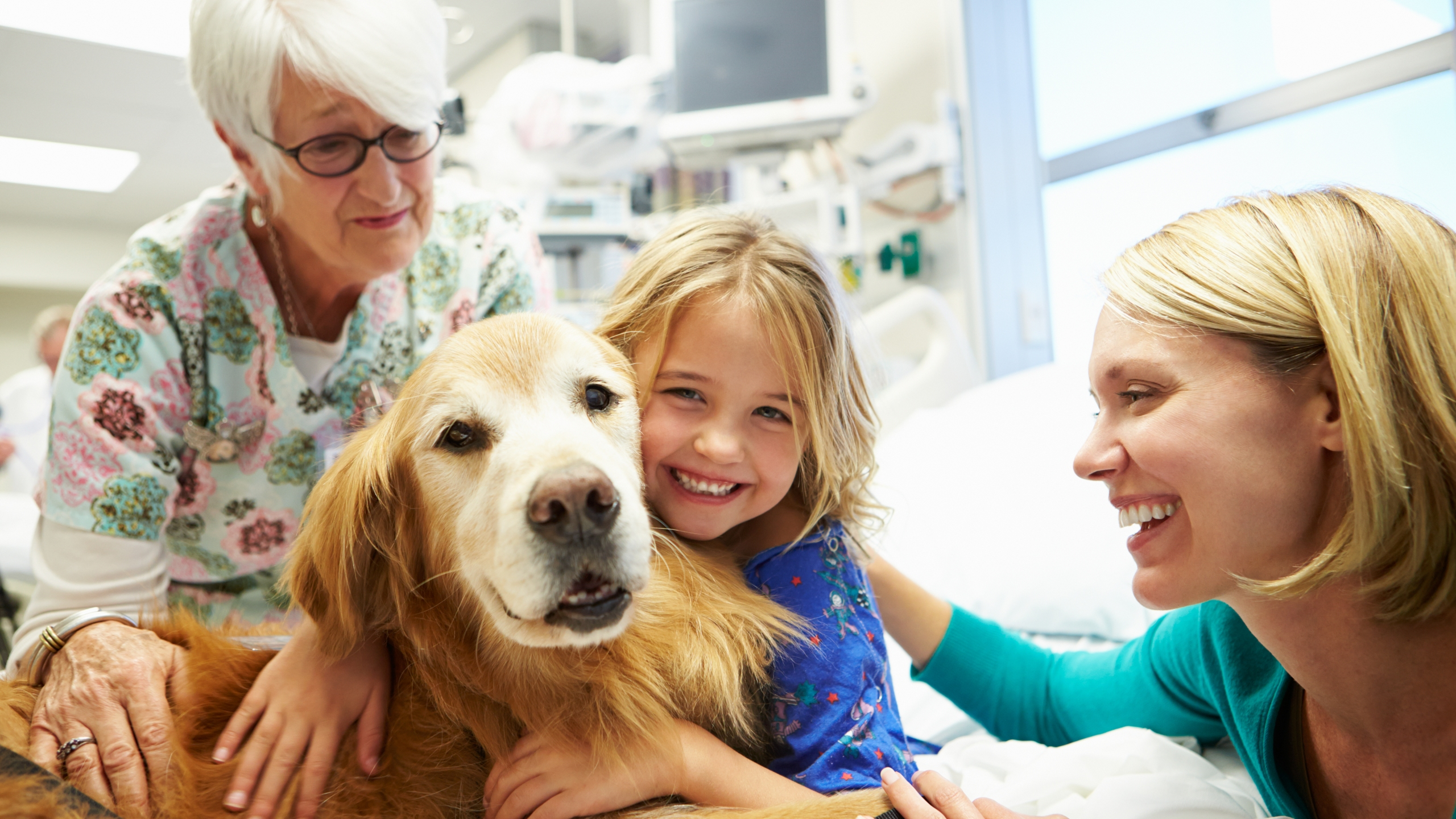 Young girl being visited in hospital by therapy dog and family. (Credit: iStock/Getty Images Plus)