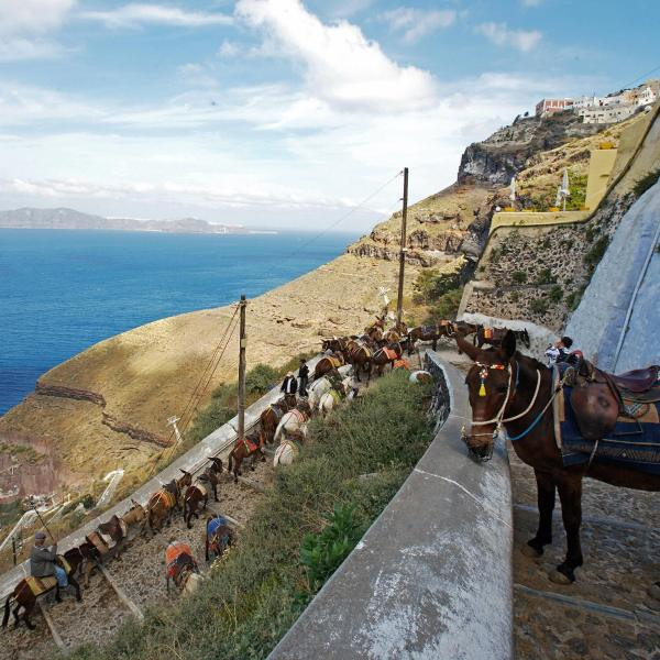 Donkeys and mules wait to give tourists a ride in the village of Fira, the capital of the famous Cycladic island of Santorini on April 25 , 2008. (Credit: LOUISA GOULIAMAKI/AFP/Getty Images)