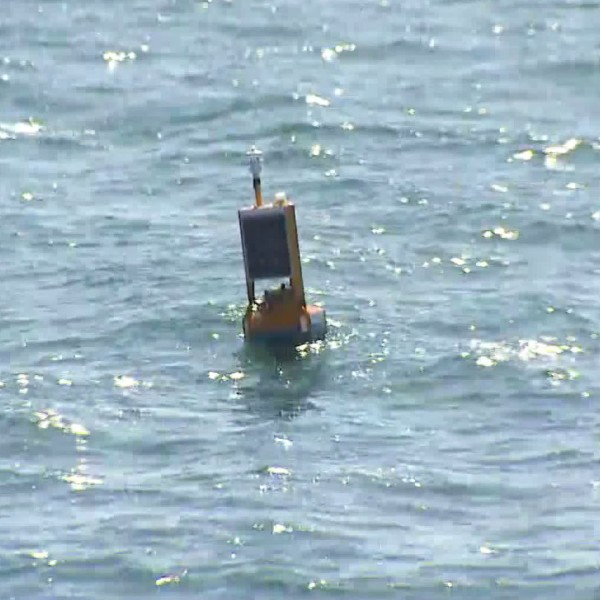 Officials presented a pilot project in Newport Beach to detect sharks swimming in the water. Chip Yost reports for the KTLA 5 News at 1 on Oct. 10, 2018.