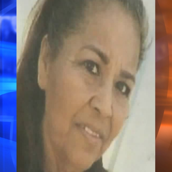 Celsa Anaya, 58, is seen in an undated photo provided by her family after she was killed in a hit-and-run crash in Orange on Oct. 23, 2018.