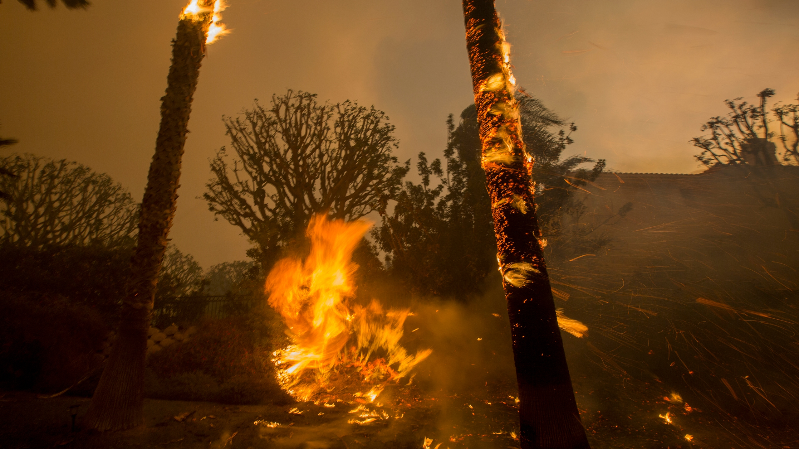 Embers are blown by strong winds roaring sound during the Woolsey Fire on Nov. 9, 2018, in Malibu. (Credit: David McNew/Getty Images)