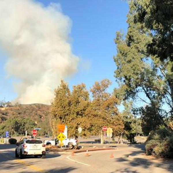 A brush fire was burning near the L.A. Zoo in Griffith Park on Nov. 9, 2018. (Credit: @themitchellfink)