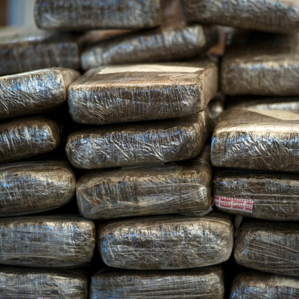 Marijuana seized by the Thai narcotic police department is seen on display before being incinerated in Ayutthaya on Sept. 17, 2011. (Credit: NICOLAS ASFOURI/AFP/Getty Images)