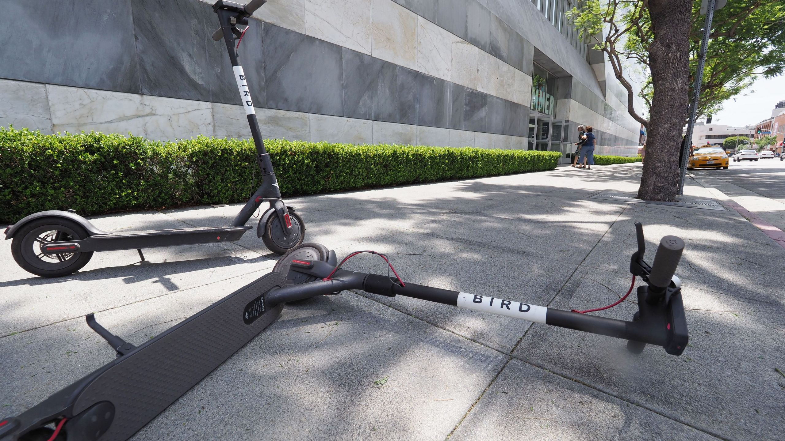 A pedestrian walks past two Bird dockless scooters, one laying on its side, in the middle of a sidewalk in Westwood on July 10, 2018. (Credit: ROBYN BECK/AFP/Getty Images)