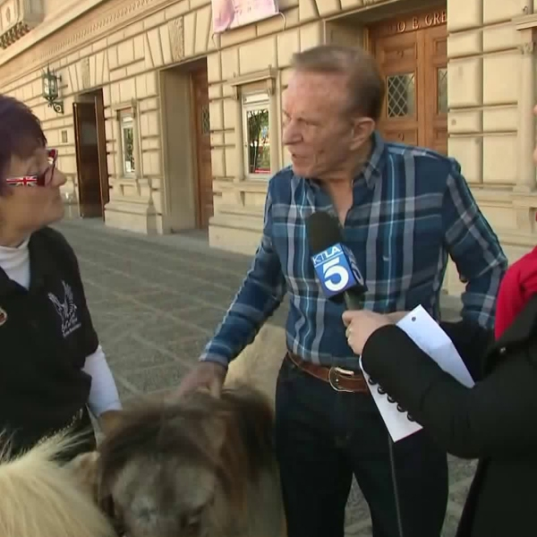 "Bob Eubanks, center, joined festivities hosted by ""Live on Green"" on Dec. 30, 2018. (Credit: KTLA)"