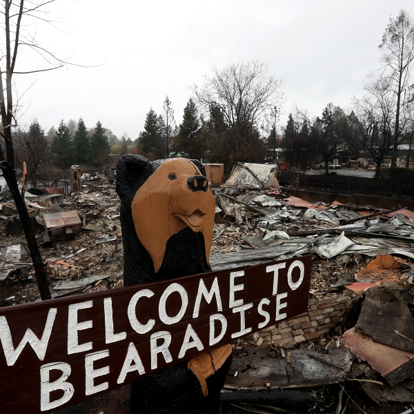 A statue of a bear remains in front of a restaurant that was destroyed by the Camp Fire, as seen on Nov. 21, 2018, in Paradise. (Credit: Justin Sullivan / Getty Images)