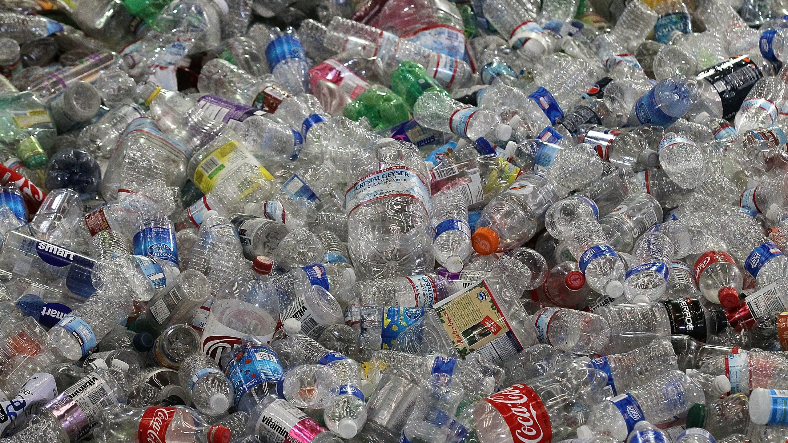 Hundreds of recycled plastic water bottles are piled up inside the Recology recycling facility on March 15, 2011, in San Francisco, California.(Credit: Justin Sullivan/Getty Images)
