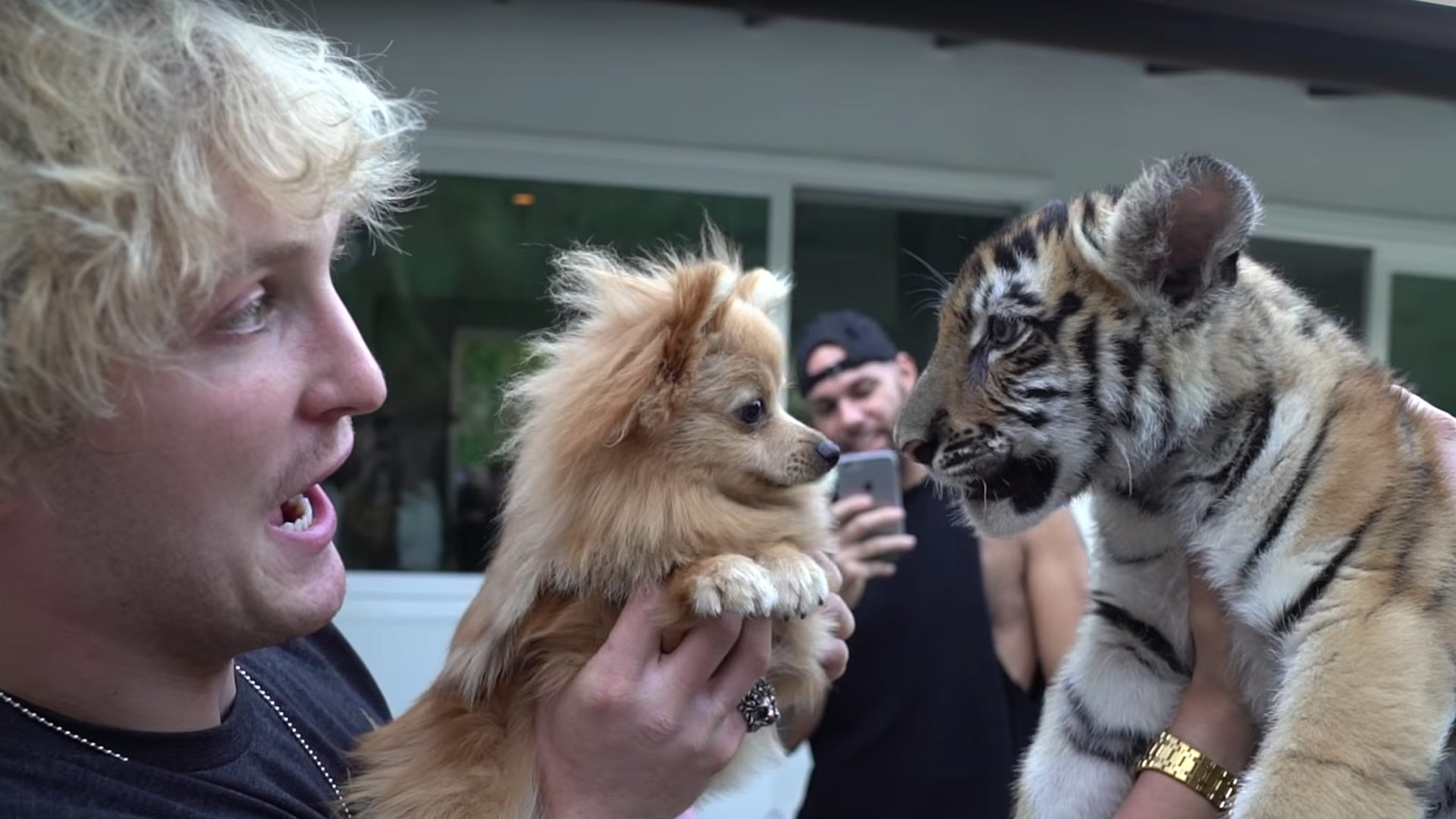 Logan Paul holds his dog in front of a tiger cub in a video posted to his YouTube channel on Oct. 21, 2017.