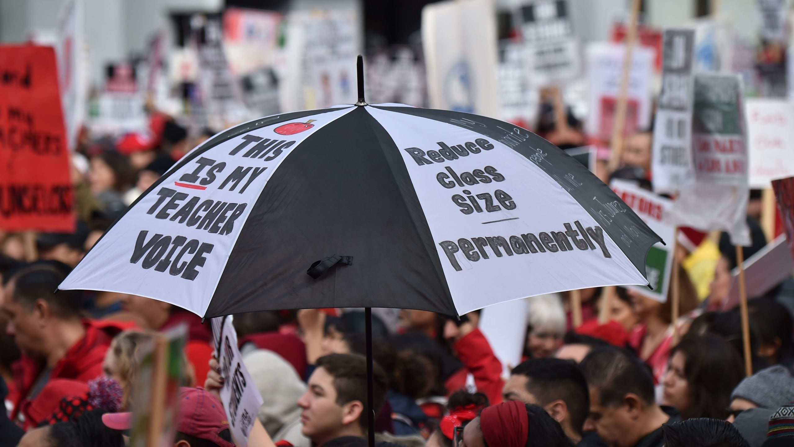 Striking teachers and their supporters rally in downtown Los Angeles on Jan. 15, 2019. (Credit: ROBYN BECK/AFP/Getty Images)
