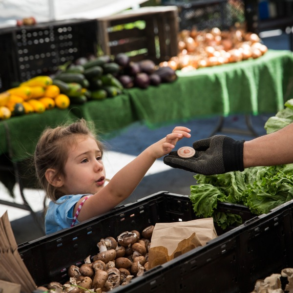 A girl pays for her mother's groceries using Electronic Benefits Transfer (EBT) tokens, more commonly known as Food Stamps, at the GrowNYC Greenmarket in Union Square on September 18, 2013 in New York City. (Credit: Andrew Burton/Getty Images)