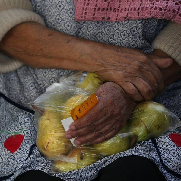 A woman holds a bag of pears as she waits in line to receive free food at the Richmond Emergency Food Bank on November 1, 2013 in Richmond, California. (Credit: Justin Sullivan/Getty Images)