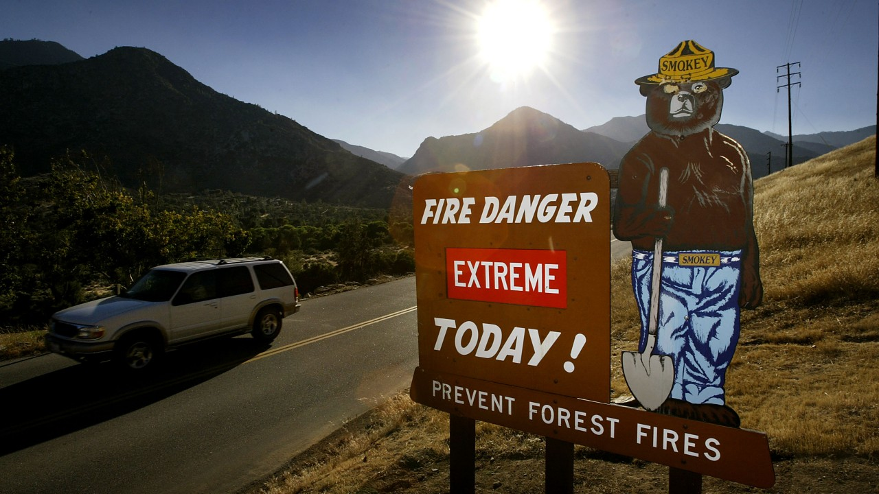 California Seeks Faster Approvals for Forest Management to Help Battle Wildfires