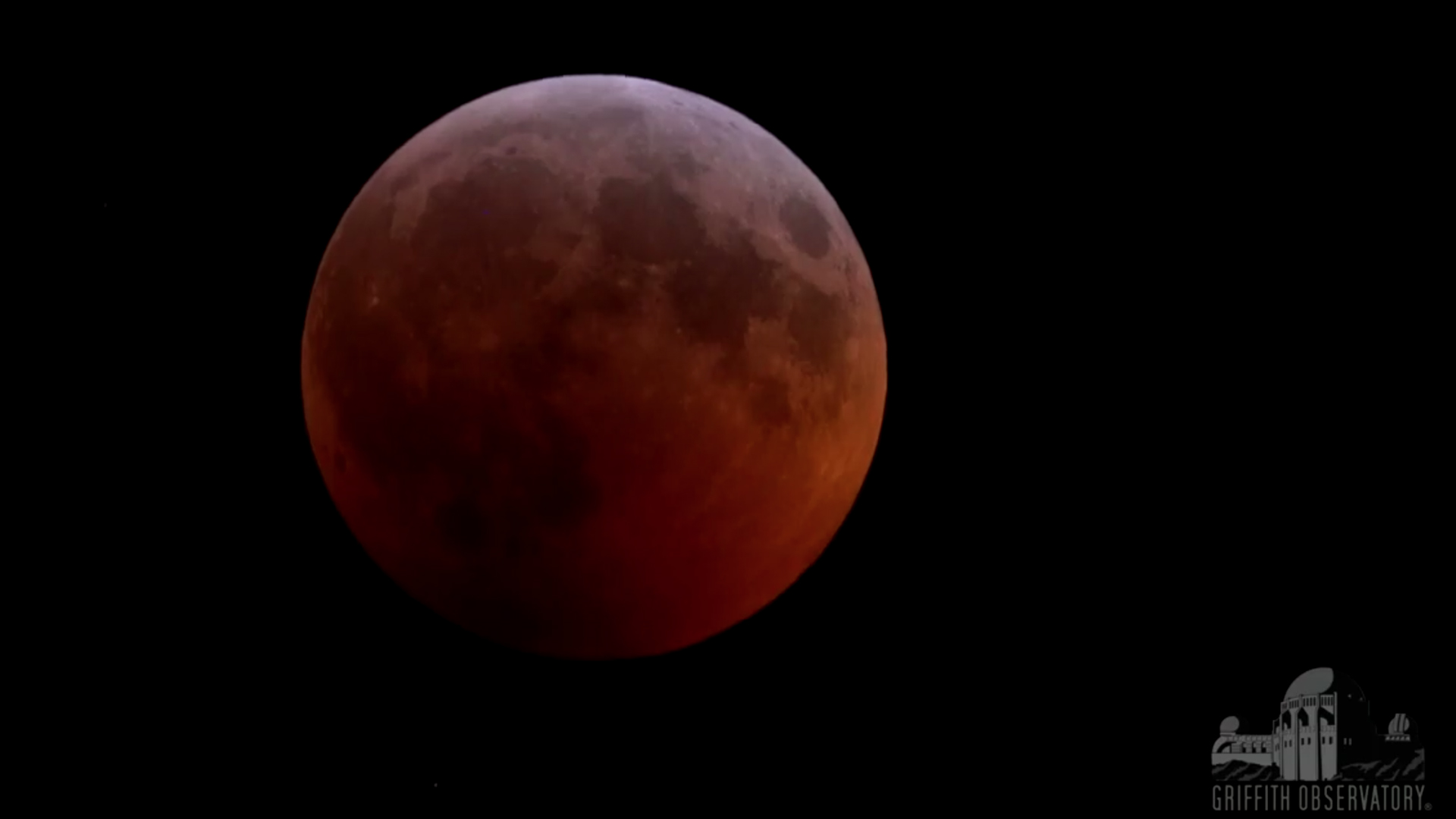 A total lunar eclipse, coinciding with a super blood wolf moon, on Jan. 20, 2019. (Credit: Griffith Observatory)