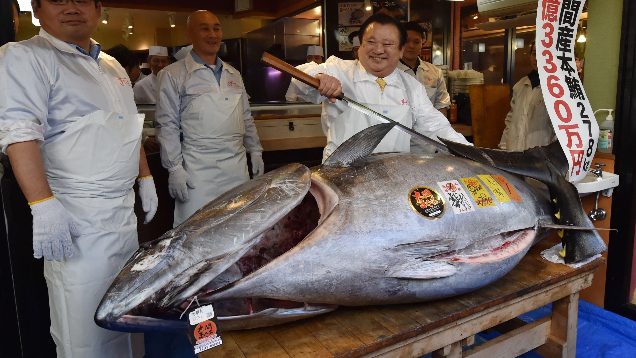 Kiyoshi Kimura, president of sushi restaurant chain Sushi-Zanmai, displays the record-setting tuna at his main restaurant in Tokyo. (Credit: CNN)