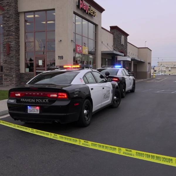 Police respond to investigate a stabbing outside a McDonald's in Anaheim on Feb. 12, 2019. (Credit: OnScene.TV)